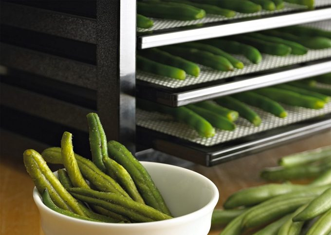 vertical air flow on food dehydrator