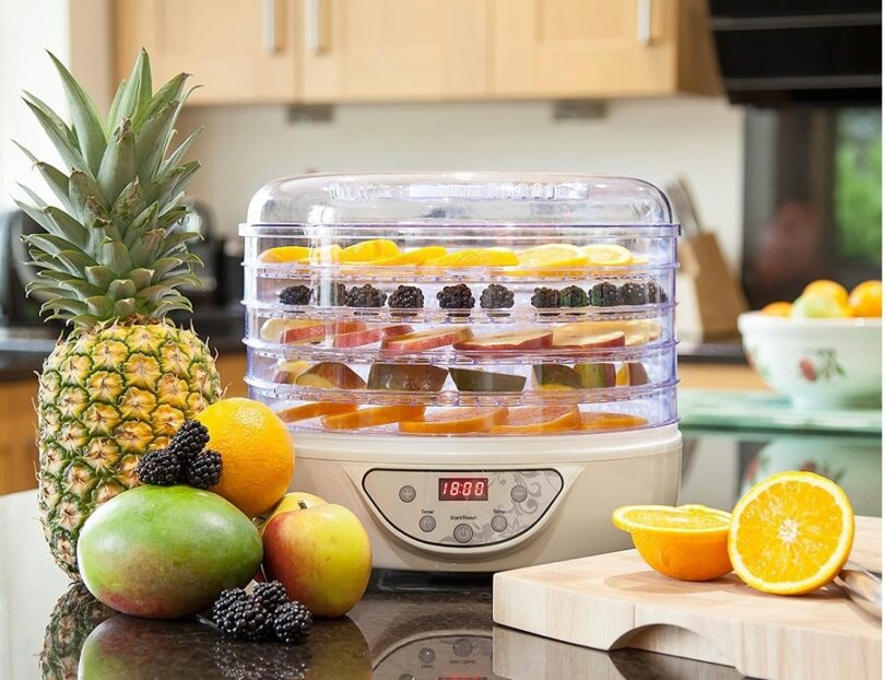 Best Food Dehydrator on the table