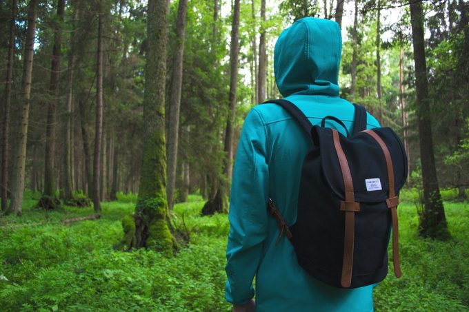 Nature Adventure Leaves Hike Man Backpack Forest