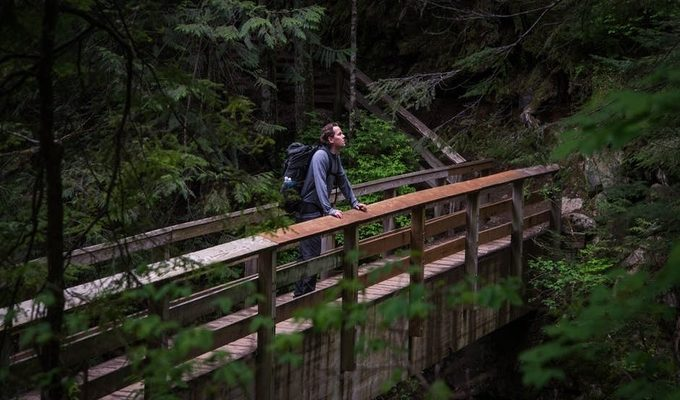 A hiker on a bridge in the woods