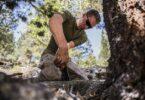 Man in Wood survival