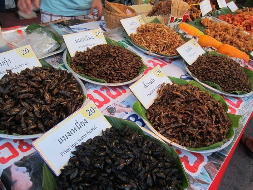 edible insects at the market