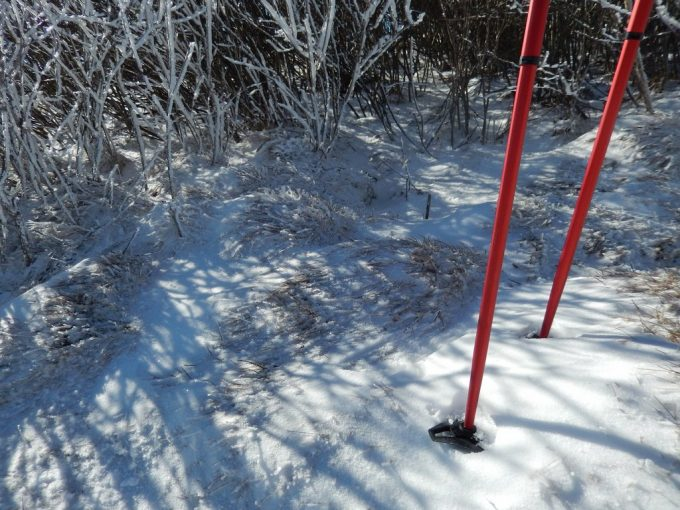 How to Use Walking Poles: Keeping Your Balance