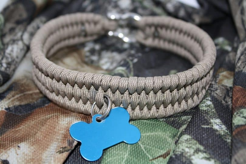 paracord as dog collar
