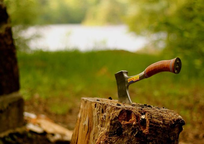 camping hatchet in wood