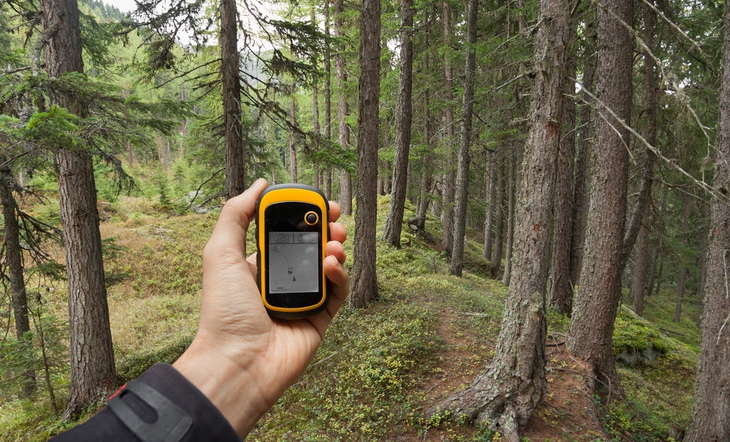 Man holding a GPS is trying to finding the right position in the forest