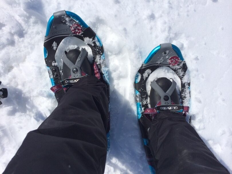 Backcountry snowshoes