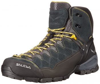 Salewa ALP GTX Technical Approach Shoes