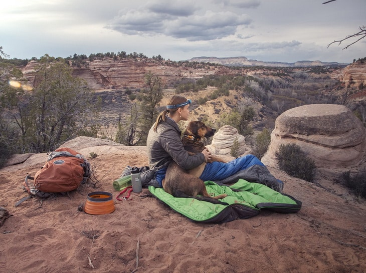 a picture of a woman and her dog watching the landscape