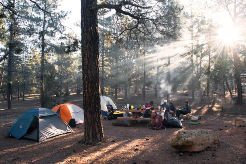 Group of People Camping on Forest during Daytime