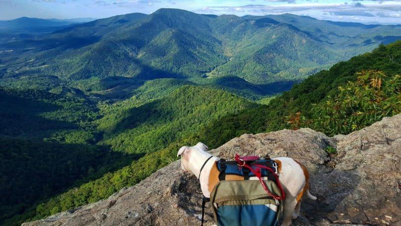 How to Thru Hike the Appalachian Trail