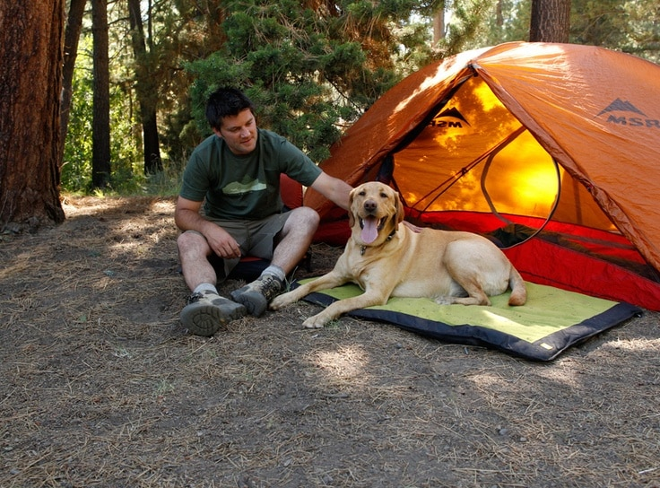 a photo of a bachelor pad dog bed on a camping trip