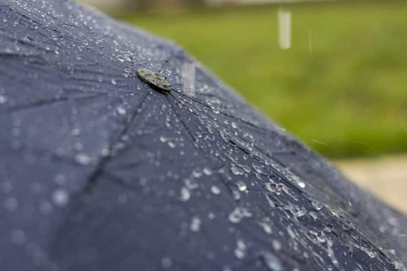 water drops on umbrella
