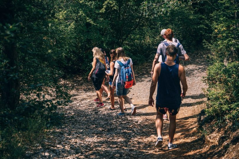 People Walking on Dirt Path in Forest at Daytime