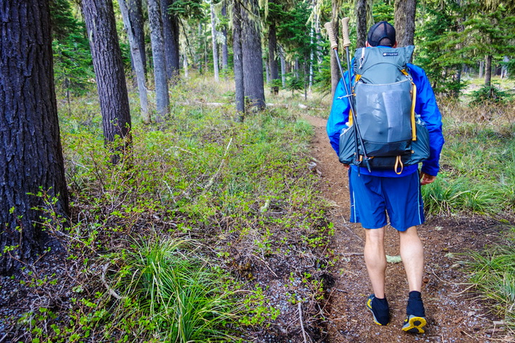 picture of a man hiking in the forest