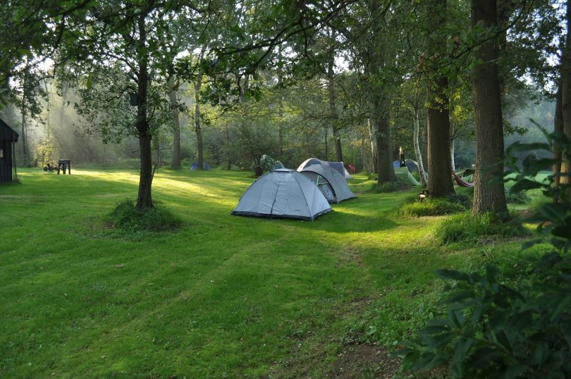 picture of tents in the woods