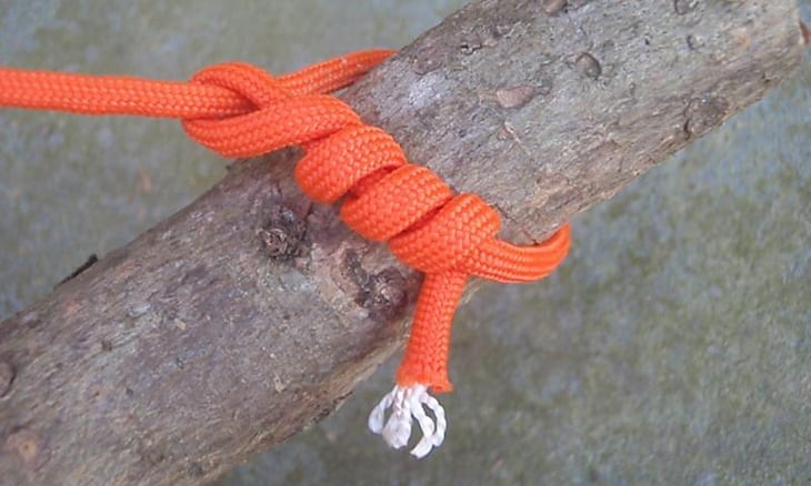 Image showing a Timber Hitch