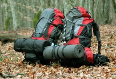 Awesome backpacks for traveling in the leaves