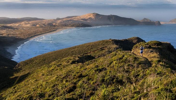 Cape Regina adjacent to the North Island