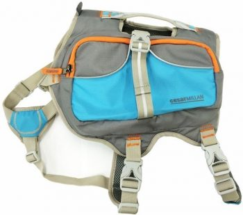 Cesar Milan Dog Backpack