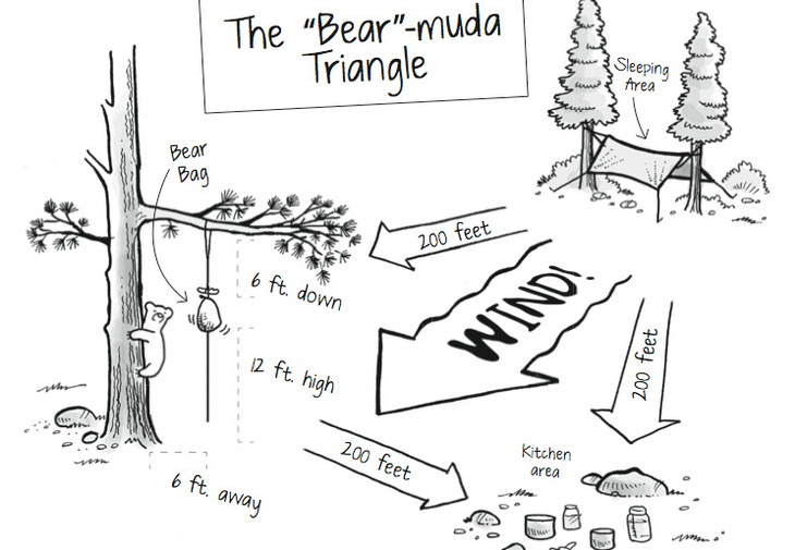 bear-muda-triangle-bear-bag