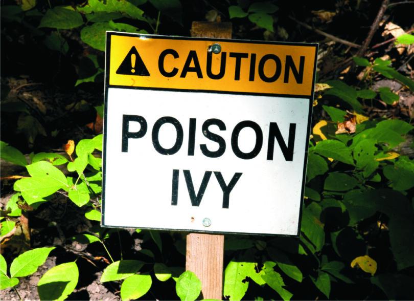 caution-poison-ivy