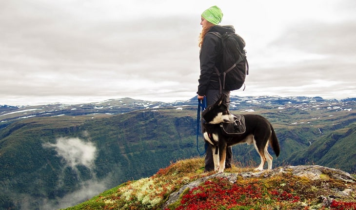 hiker with her dog on top of mountains