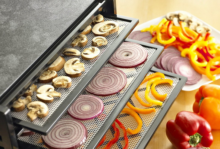 Picture of Excalibur dehydrator