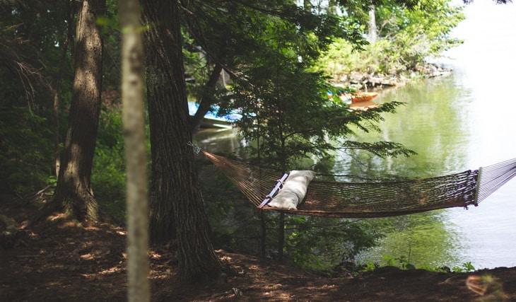 Brown Hammock Between 2 Brown Trees Beside Body of Water during Daytime