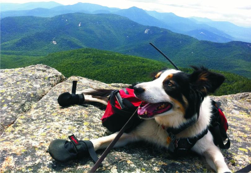 hiking-bog-boots