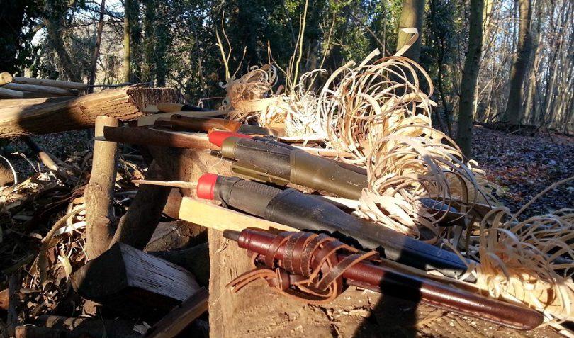 hornbeam wood for campfire
