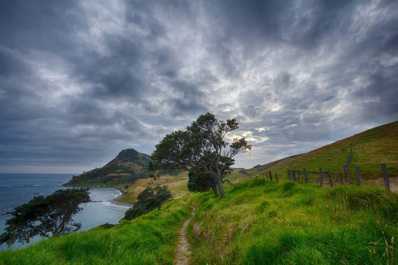 new-zealand mountains landscape