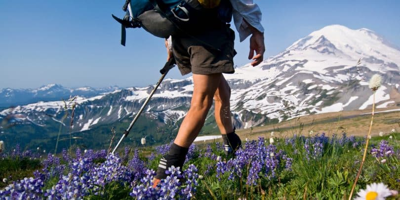 Female backpacker on Cowlitz Divide, Mount Rainier National Park, Washington, USA