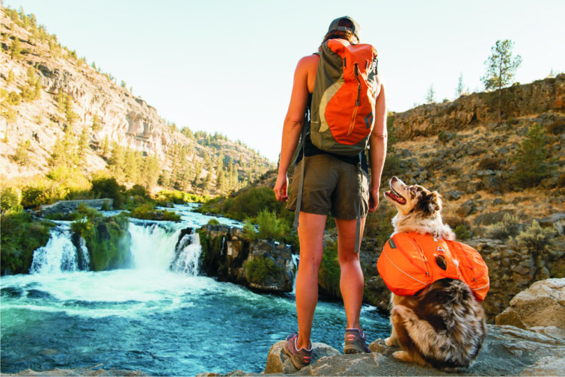 person-hiking-with-a-dog