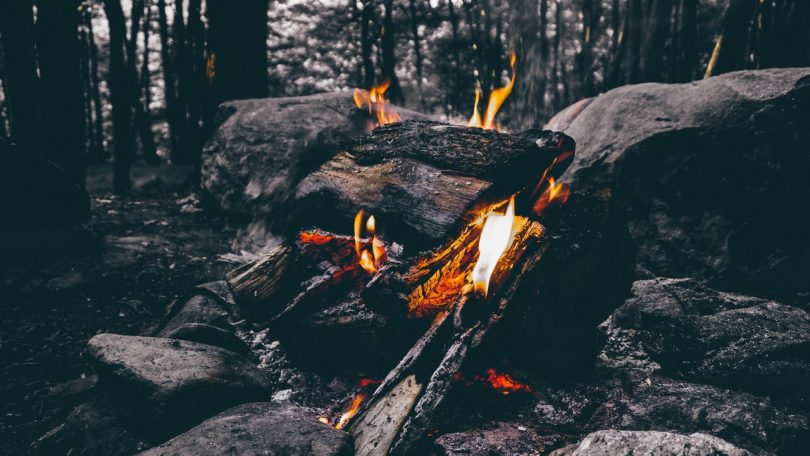 Wood Fire Camping on Forest
