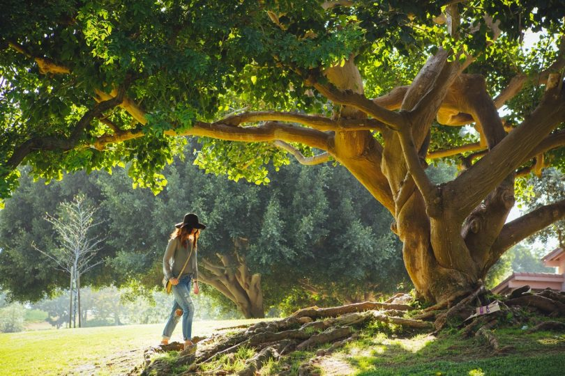 photo of a woman walking in the forest during daylight