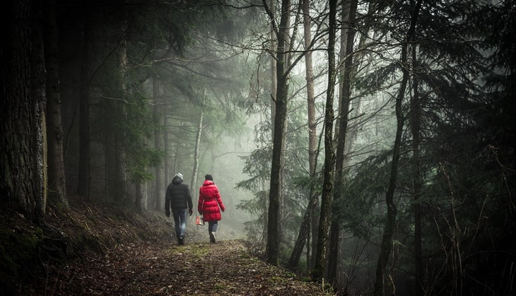 Two people hiking in forest