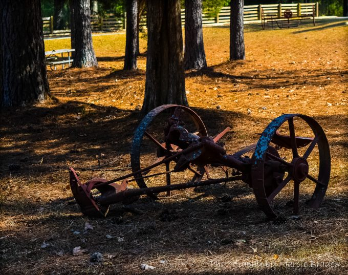 Oak Mountain State Park - Pelham, AL