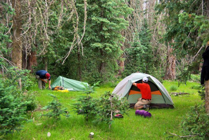Camping below Kendrick Peak