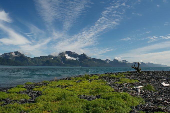 Kenai Fjords Eligible Wilderness
