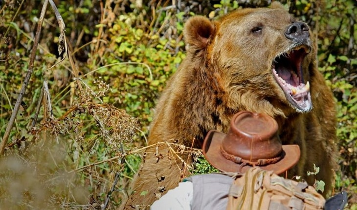 Bear-has identified a man presence and its intention is to attack