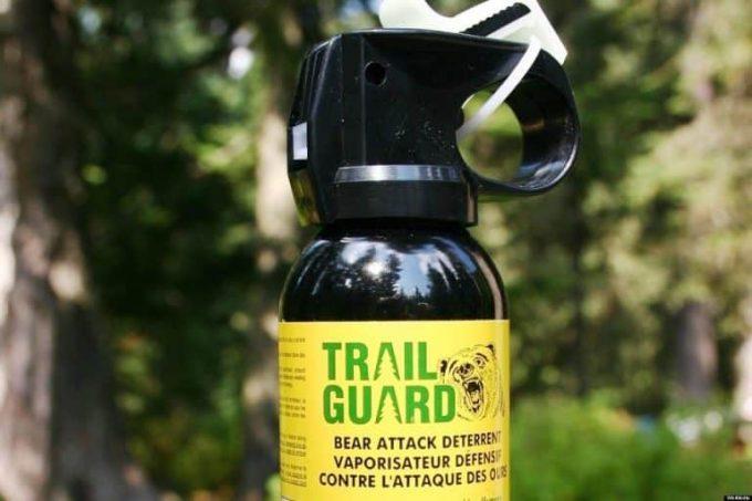spray-agains-bears