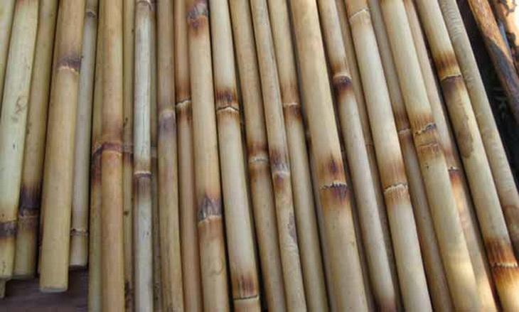 Burning rattan sticks