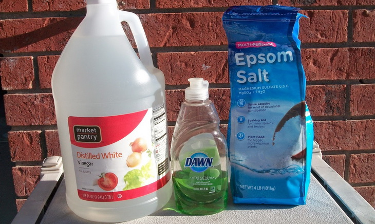 Homemade Weed Killer Spray That Uses Non Chemical Products