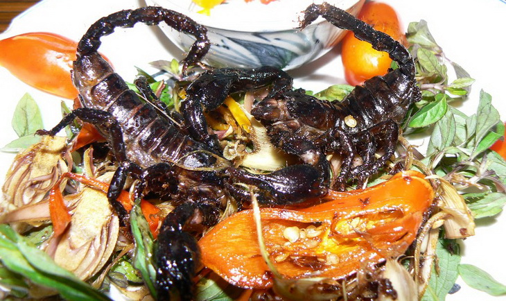 Scorpions on plate ready to be eaten