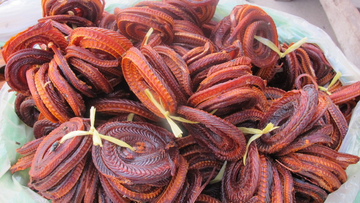 Snakes are eaten dry with seasoning