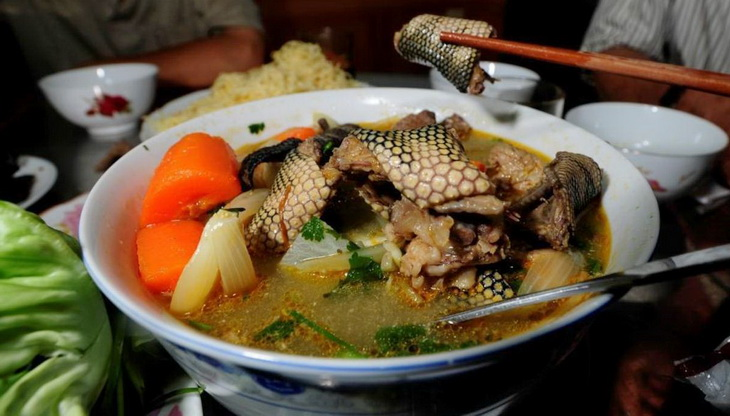 Tasty sea snake soup