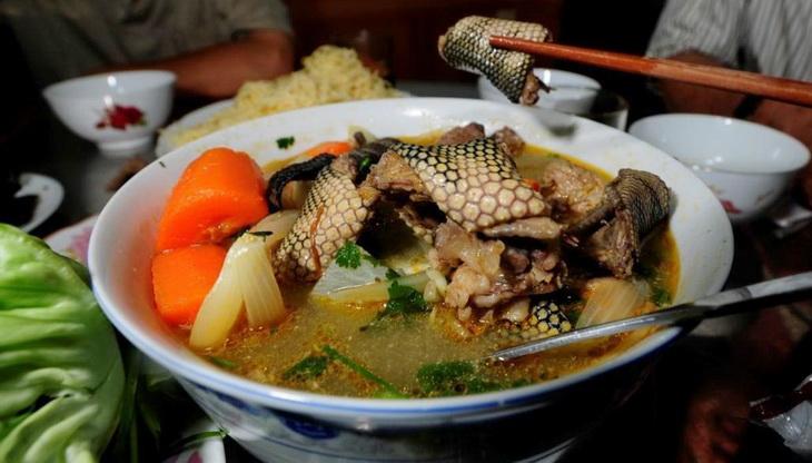 Tasty sea snake soup