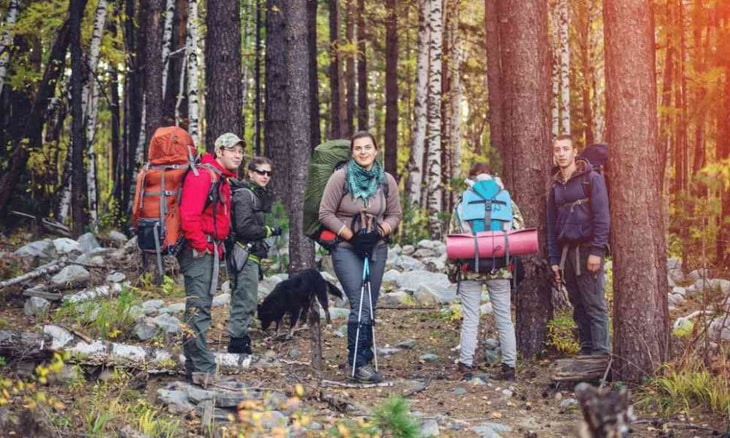 Group of hikers in the forest