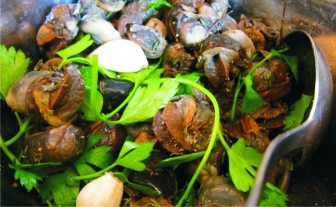cooking-snails